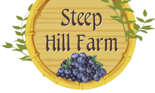 Steep Hill Farm Blueberries – Maine